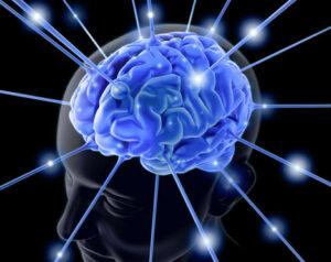 cerebro_lenguaje