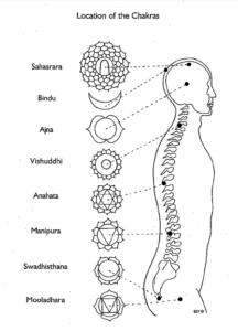 localización chakras